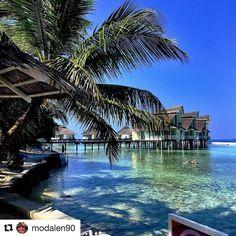 Maldivene! . Kos dere masse . #reiseblogger #reiseliv #reisetips  #Repost @modalen90 with @repostapp  Da har vi hatt oss en runde rundt øya. 20min med avslappet gåing. Det er fortsatt fantastisk fint  #ellaidhoo #cinnamon #bungalow #cinnamonellaidhoo #morningwalk #tripadvisor #reiseradet #male #maldives #