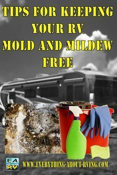 Tips for Keeping Your RV Mold and Mildew Free.  Your RV could become an…