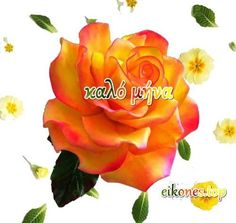Εικόνες για καλό μήνα - eikones top Winnie The Pooh, Disney Characters, Rose, Flowers, Plants, Art, Art Background, Pink, Winnie The Pooh Ears