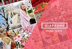 Due settimane in Giappone: cosa vedere e quali città visitare assolutamente oltre Tokyo? Kyoto, Nara e Osaka
