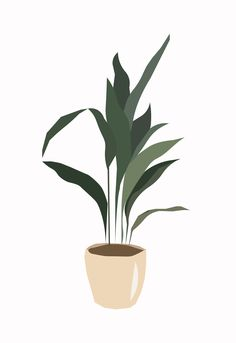 Plant Painting, Plant Drawing, Plant Art, Plant Aesthetic, Aesthetic Art, Plant Illustration, Kitchen Wall Art, Aesthetic Iphone Wallpaper, Minimalist Art