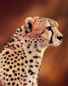 cheetah painting