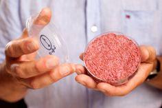 News, New York Times : A Lab-Grown Burger introduced.