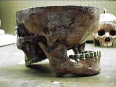 """Bowl made by serial killer Ed Gein out of a real human skull, just one of his many horrific creations. Natural Born Killers, Evil People, Psychopath, Criminal Minds, Serial Killers, True Crime, I Am Scared, Weird, Creepy Stuff"