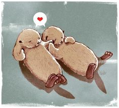 Because otters!