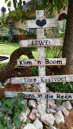 My diy Christmas tree Diy Garden Projects, Projects To Try, Garden Beds, Garden Art, Hobbies And Crafts, Diy And Crafts, Cement Flower Pots, Afrikaans Quotes, Garden Signs