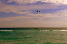Infinity Beach III [Ltd Ed of 10] by Alaina – ABBY ESSIE