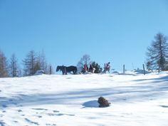 Winter in Kärnten oder ein Versuch, sich mit der kalten Jahreszeit zu arrangieren - barfuss-durchs-lebens Webseite! Versuch, Snow, Winter, Outdoor, Snow Boots, Website, Explore, Cold, Seasons Of The Year