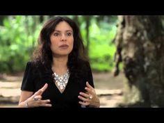 """▶ Booktrailer - """"O inventário das coisas ausentes"""", de Carola Saavedra - YouTube"""