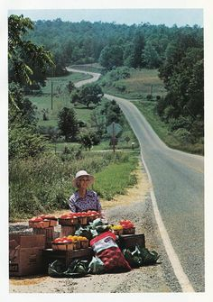 """Mrs. A. C. Cruse sells fruits and vegetables by the side of State 60 in northern Georgia."""