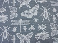Marson Bichos Bugs Butterfly Insect Grey Curtain Craft Upholstery Fabric