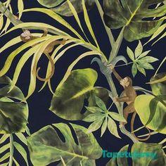 Jungle dark wallpaper with monkey