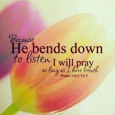 god hears our prayers Prayer Verses, Scripture Verses, Bible Verses Quotes, Bible Scriptures, Psalm 116, Psalms, Biblical Quotes, Religious Quotes, Jesus Is Lord