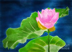 Pink Lotus by Joan A Hamilton Lotus Painting, Fruit Painting, Pink Lotus, Simple Designs, Hamilton, Fine Art America, Plant Leaves, Fine Art Prints, Flower Paintings