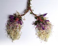Intricate Sculptures Of Human Organs, Made Using Wild Plants via @ongezondnl