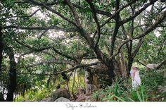 Seychellen Hochzeit auf la Digue - Hochzeitsfotograf Seychellen