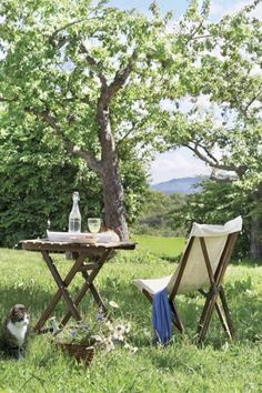 sitting in an orchard... next to the fruit trees, the garden and the current berries... time for a glass of Kir Royal... santé mes amis...