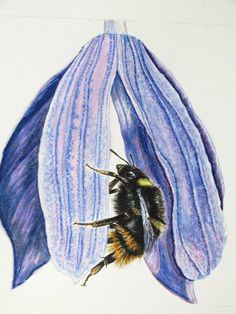 Learn how to draw with our step-by-step paintings by wildlife artist Cath Hodsman. A Level Photography, Organic Art, Fantasy Fiction, Insect Art, Step By Step Painting, Natural Forms, Source Of Inspiration, Painting Tutorials, Picasso