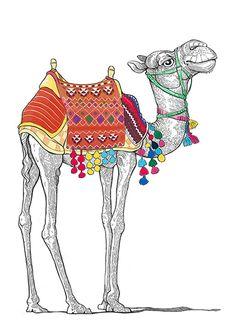 cute camel illustration - Google Search