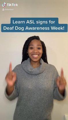 Sign Language Book, Sign Language Chart, Sign Language Phrases, Sign Language Alphabet, Learn Sign Language, Learn Another Language, American Sign Language, Deaf Sign, Asl Signs