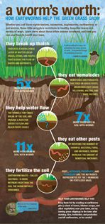 A worm's worth: How earthworms help the green grass grow.  http://www.lawncare.net/earthworms/#