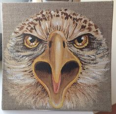 Bald Eagle - Aigle Pygargue - acrylique sur toile de lin brut - 2015