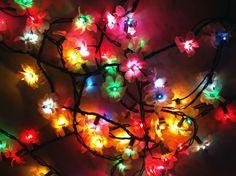 DIY flower string lights.