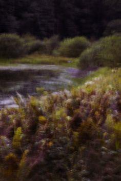New View, Landscapes, Nature, Painting, Art, Paisajes, Art Background, Scenery, Naturaleza