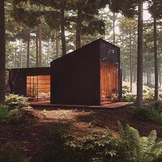 Pine Forest House ♥ Render by Are you looking for a support for your interior and and architectural visuals ? Forest Cabin, Forest House, Pine Forest, Tiny House Cabin, Tiny House Design, Modern Tiny House, Modern Wood House, Cabin Design, Tiny Houses