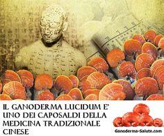 Il #GanodermaLucidum è uno dei capisaldi della #MTC, #MedicinaTradizionaleCinese