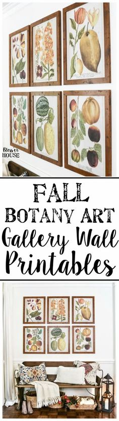 Fall Botany Art Gallery Wall Printables | blesserhouse.com - A free printable set of 6 fall botany art prints for a gallery wall, plus a bloghop with 29 autumn-inspired printables for the home. Farmhouse Side Table, Farmhouse Kitchen Decor, Outdoor Shower Fixtures, House Blessing, Living Room Color Schemes, Easy Home Decor, Christmas Signs, Room Colors, Gallery Wall