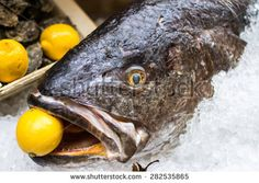 close up of a #raw #meagre #fish with a #lemon in the mouth