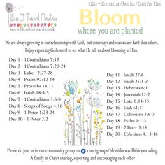 Bless It Forward Ministries - Themed Reading Plans Prayer Verses, Bible Verses Quotes, Bible Scriptures, Lyric Quotes, Quotes Quotes, Bible Study Tips, Bible Study Journal, Art Journaling, Father's Love Letter