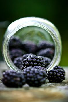 Lots of health benefits packed in blackberries. Looking to buy more of these.