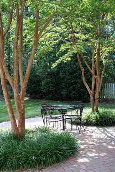 Pretty brick patio with two crape myrtle trees surrounded by monkey grass (liriope) on either side