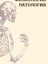 Обзор основных групп мышц по производимым ими движениям [1986 Гаврилов Л.Ф., Татаринов В.Г. - Анатомия]