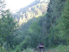 Train in a walley of the river Sázava, by train stop Přívlaky (central Bohemia, distr.Benešov)