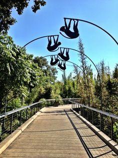 The Monkey Trail!! #SanDiegoZoo