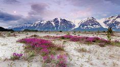 Moon Rise, St. Elias Mountains, Alaska - http://imashon.com/travel/moon-rise-st-elias-mountains-alaska.html
