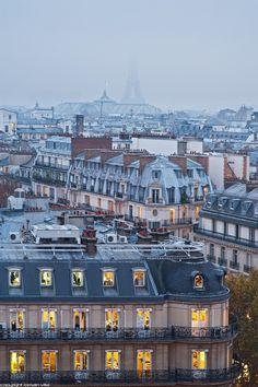 Les toits de Paris (le Grand Palais et la Tour Eiffel).