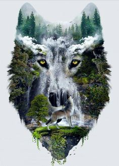 Mystical Woods Wolf RV motorhome Window Graphic Decal decals Graphics Car Truck by SuperbDecalsLLC on Etsy Wolf Photos, Wolf Pictures, Wolf Artwork, Wolf Painting, Fantasy Wolf, Wolf Spirit Animal, Wolf Tattoo Design, Wolf Wallpaper, Wolf Love