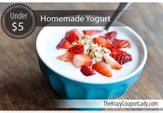 Save Money by Making Your Own Yogurt in a Slow Cooker!