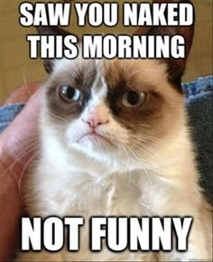 #GrumpyCat #meme Grumpy Cat™ stuff, gifts, quotes, meme on www.pinterest.com/erikakaisersot