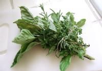 Holy basil in particular (the kind you use in pesto) contains compounds that stimulate adrenaline and noradrenaline production, while decreasing serotonin—all effective ways to reduce feelings of stress. Healing Herbs, Medicinal Plants, Natural Healing, Holistic Healing, Herb Plants, Aromatic Herbs, Natural Herbs, Natural Medicine, Herbal Medicine