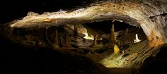 Information for your visit to St Beatus Caves to discover the Niederhorn's hidden treasure, including opening hours and prices Bern, Natural Architecture, Touring, Switzerland, Saints, Caves, Europe, Holidays, Travel Destinations