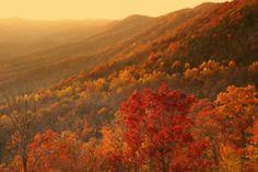 Peak Color at Sunset
