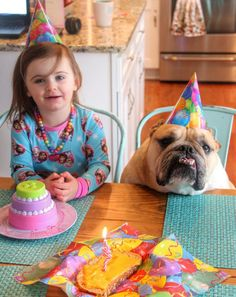 The relationship between 2-year-old Erin Craig and her big brother, a 4-year-old bulldog named Harvey is beyond adorable.