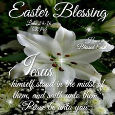 Easter Blessing easter easter quotes easter images happy easter easter blessings easter image quotes easter quotes with images easter greetings welcome easter Happy Easter Quotes, Happy Easter Wishes, Happy Easter Sunday, Easter Monday, Easter Sayings, Easter Weekend, Easter Images Religious, Easter Greetings Messages, Monday Greetings