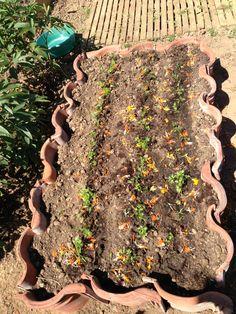 Verhoogd bed van dakpannen 2 voor de wortelen