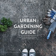 Urban Gardening Guide — Learn how to start your urban garden and convert the empty pockets in your city into productive garden spaces http://wildthymesweetpea.com/garden-guide/